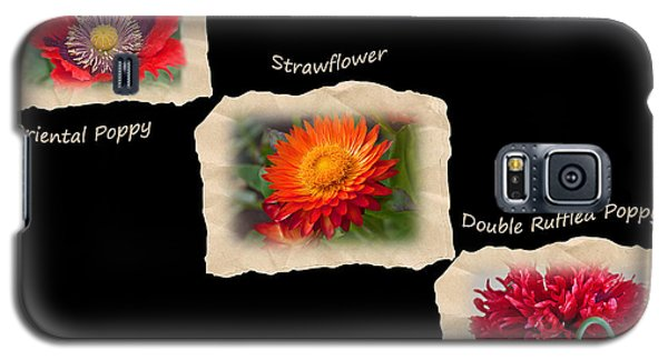 Galaxy S5 Case featuring the photograph Three Tattered Tiles Of Red Flowers On Black by Valerie Garner