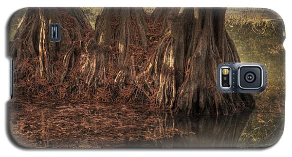 Galaxy S5 Case featuring the photograph Three Trees In Lake Murray by Tamyra Ayles