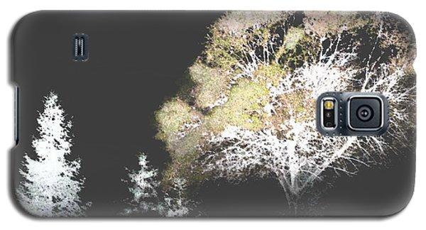 Three Trees In The Dark Galaxy S5 Case