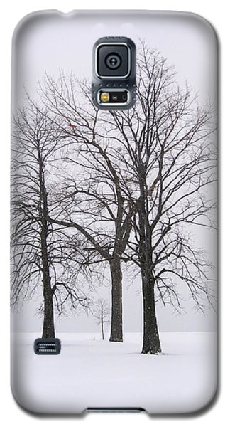 Three Trees Galaxy S5 Case