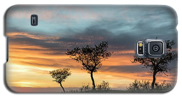 Three Trees On A Hill Galaxy S5 Case