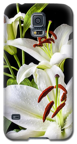 Three White Lilies Galaxy S5 Case by Garry Gay