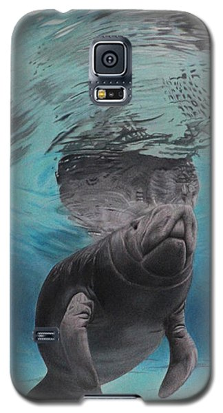 Three Worlds II Galaxy S5 Case