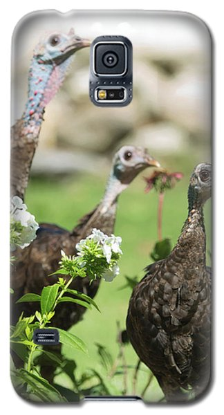 Threes A Crowd Galaxy S5 Case