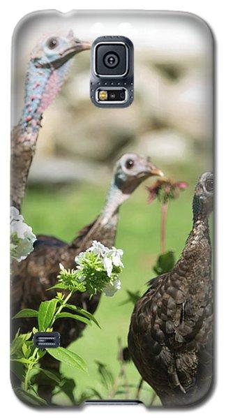Threes A Crowd Galaxy S5 Case