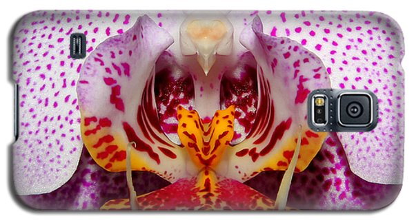 Galaxy S5 Case featuring the photograph Throat Of An Orchid by Judy Vincent