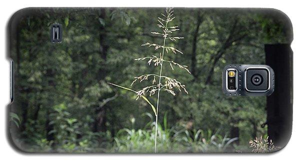 Through The Barn Galaxy S5 Case