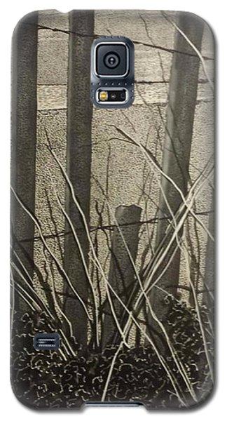 Through The Beach Fence Galaxy S5 Case