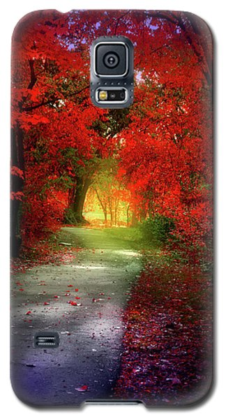Through The Crimson Leaves To A Golden Beginning Galaxy S5 Case