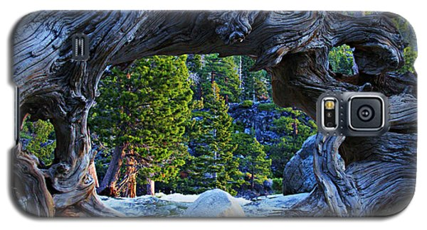 Through The Looking Glass Galaxy S5 Case