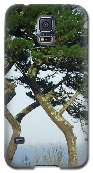 Through The Trees To Godrevy From St. Ives Galaxy S5 Case