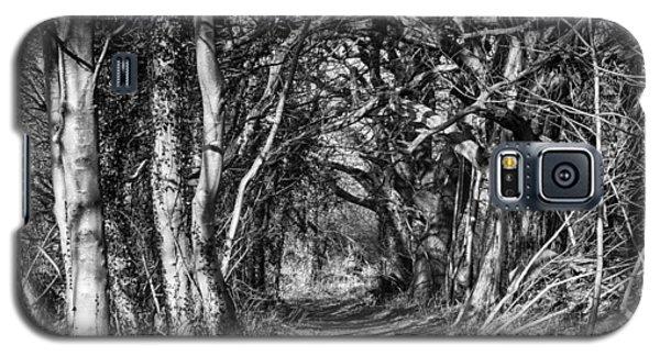 Through The Tunnel Bw 16x20 Galaxy S5 Case