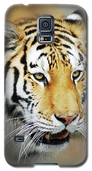 Tiger Eyes Galaxy S5 Case by Michael Peychich