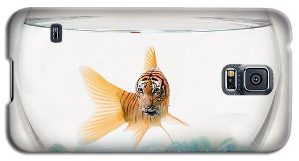 Catfish Galaxy S5 Case - Tiger Fish by Juli Scalzi