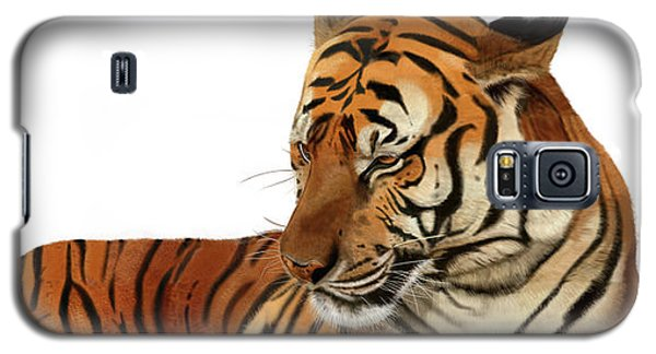 Tiger In Repose Galaxy S5 Case