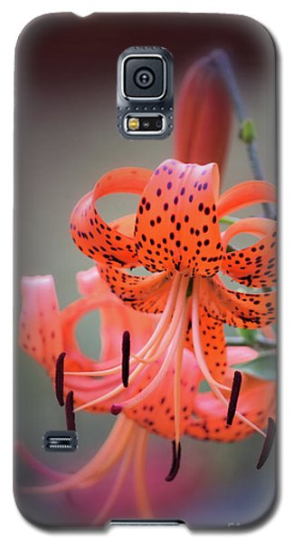 Tiger Lily 2 Galaxy S5 Case
