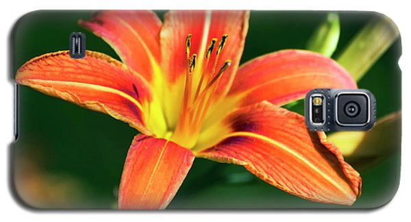 Galaxy S5 Case featuring the photograph Tiger Lily by Christina Rollo