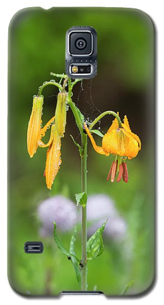 Tiger Lily In Olympic National Park Galaxy S5 Case