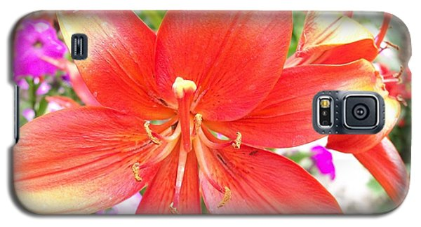 Galaxy S5 Case featuring the photograph Tiger Lily by Sharon Duguay