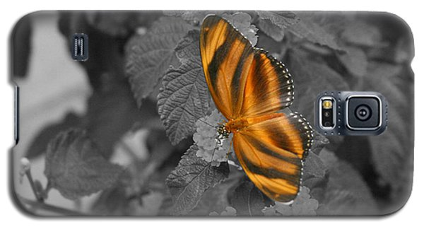 Tiger On The Wing 1 Colorized Galaxy S5 Case