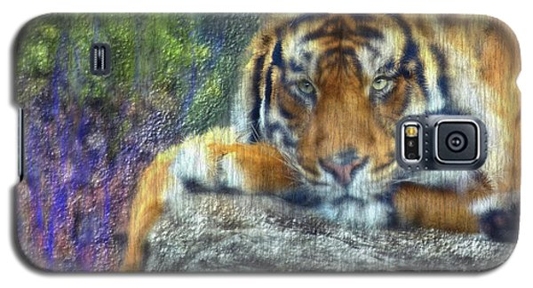 Tigerland Galaxy S5 Case by Michael Cleere
