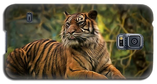 Galaxy S5 Case featuring the photograph Tigers Beauty by Scott Carruthers