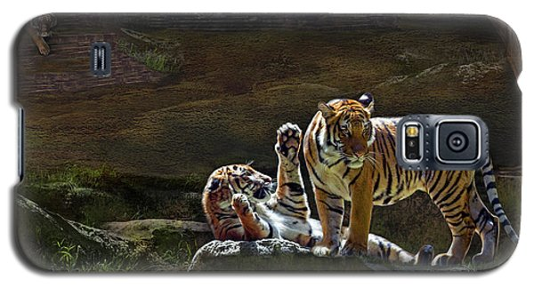 Tigers In The Night Galaxy S5 Case