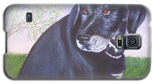 Tiko, Lovable Family Pet. Galaxy S5 Case