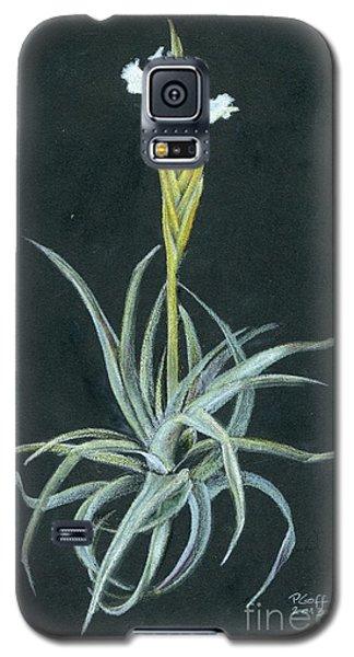 Tillandsia Diaguitensis Galaxy S5 Case