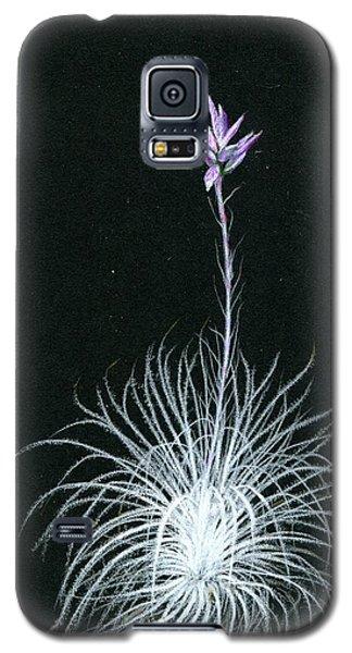 Tillandsia Tectorum Galaxy S5 Case
