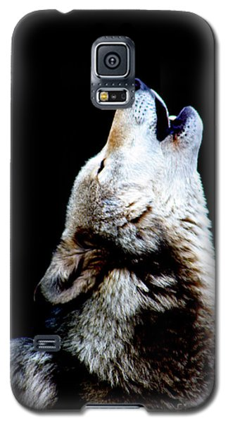 Time To Howl Galaxy S5 Case