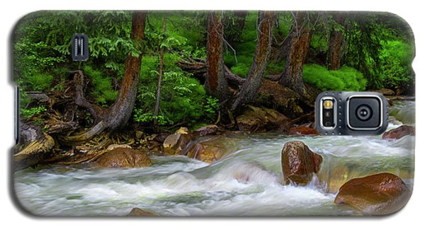 Galaxy S5 Case featuring the photograph Timeless by Tim Reaves