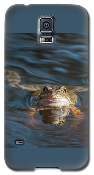 Timeout From The Annual Frog Ball Galaxy S5 Case