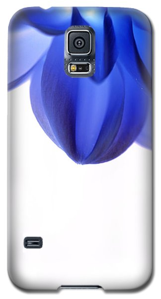 Timid In Blue Galaxy S5 Case