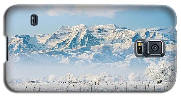 Timp In Winter Galaxy S5 Case