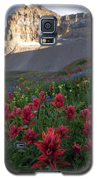 Timpanogos Paintbrush Galaxy S5 Case