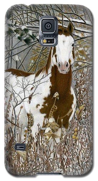 Tinman, Pastel Galaxy S5 Case