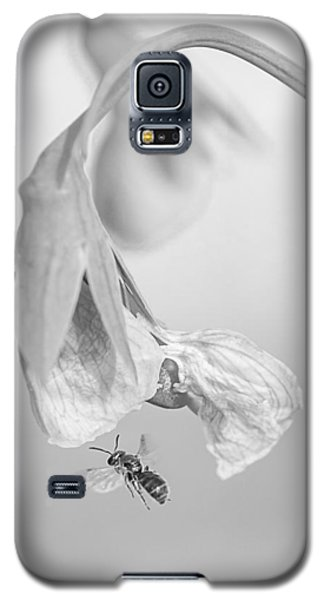 Tiny Bee Around Tiny Pea Galaxy S5 Case