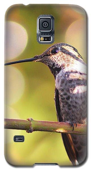Tiny Bird Upon A Branch Galaxy S5 Case