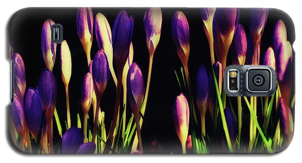 Galaxy S5 Case featuring the painting Tiny Crocus by Elaine Manley