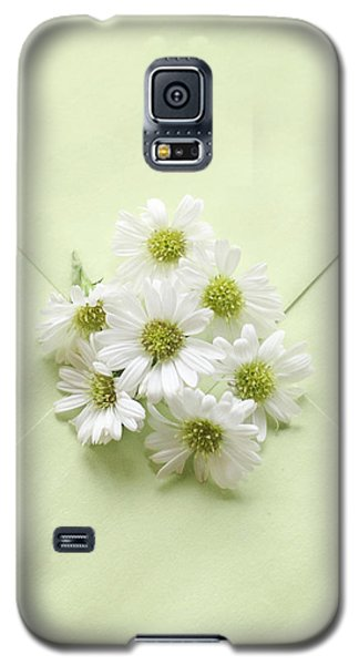 Tiny Daisies On Green Envelope Galaxy S5 Case