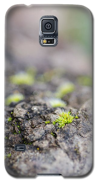 Tiny Life Galaxy S5 Case