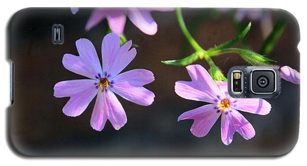 Tiny Pink Flowers Galaxy S5 Case by John S