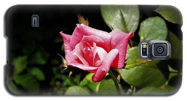 Tiny Rose Galaxy S5 Case