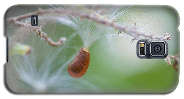 Tiny Seed Galaxy S5 Case