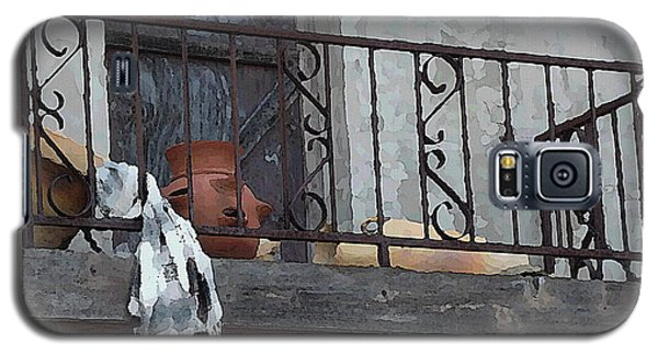 Tiny Southwest Balcony Galaxy S5 Case