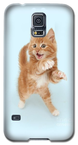 Tiny Tiger Galaxy S5 Case