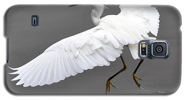 Tiptoe Galaxy S5 Case by Fraida Gutovich