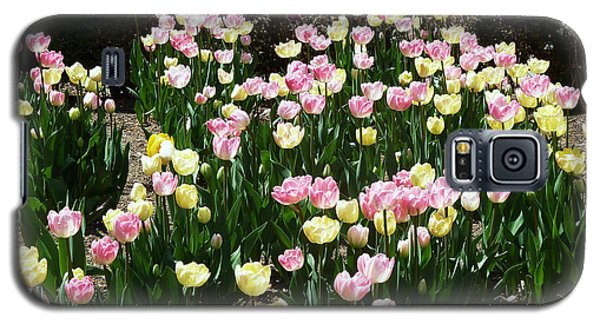 Galaxy S5 Case featuring the photograph Tiptoe Through The Tulips by Helen Haw