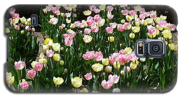 Tiptoe Through The Tulips Galaxy S5 Case by Helen Haw